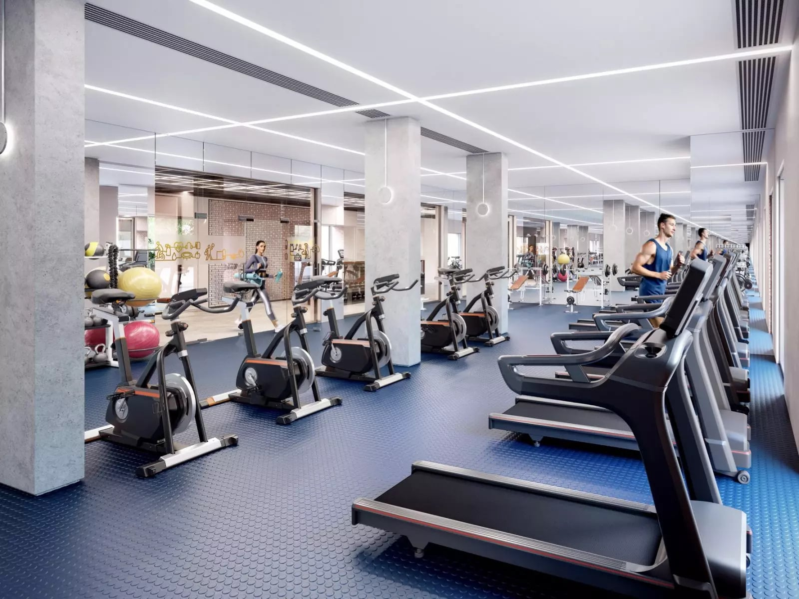 Fifty5ive Gym